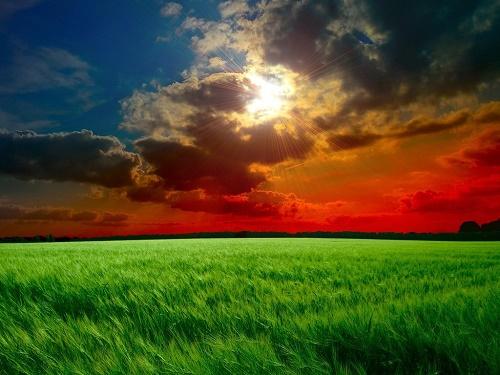 Red Sky Landscape_500px